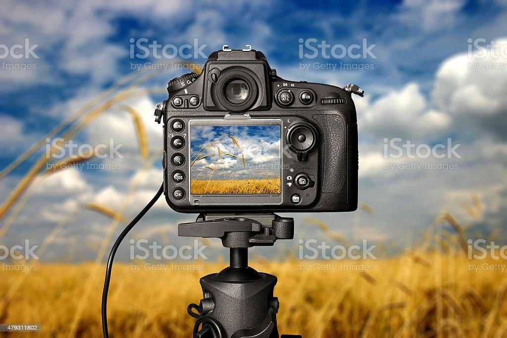 Digital camera on day. stock photo