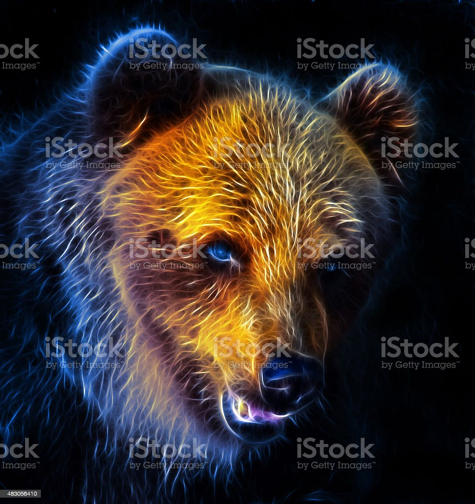 Digital drawing of a bear stock photo