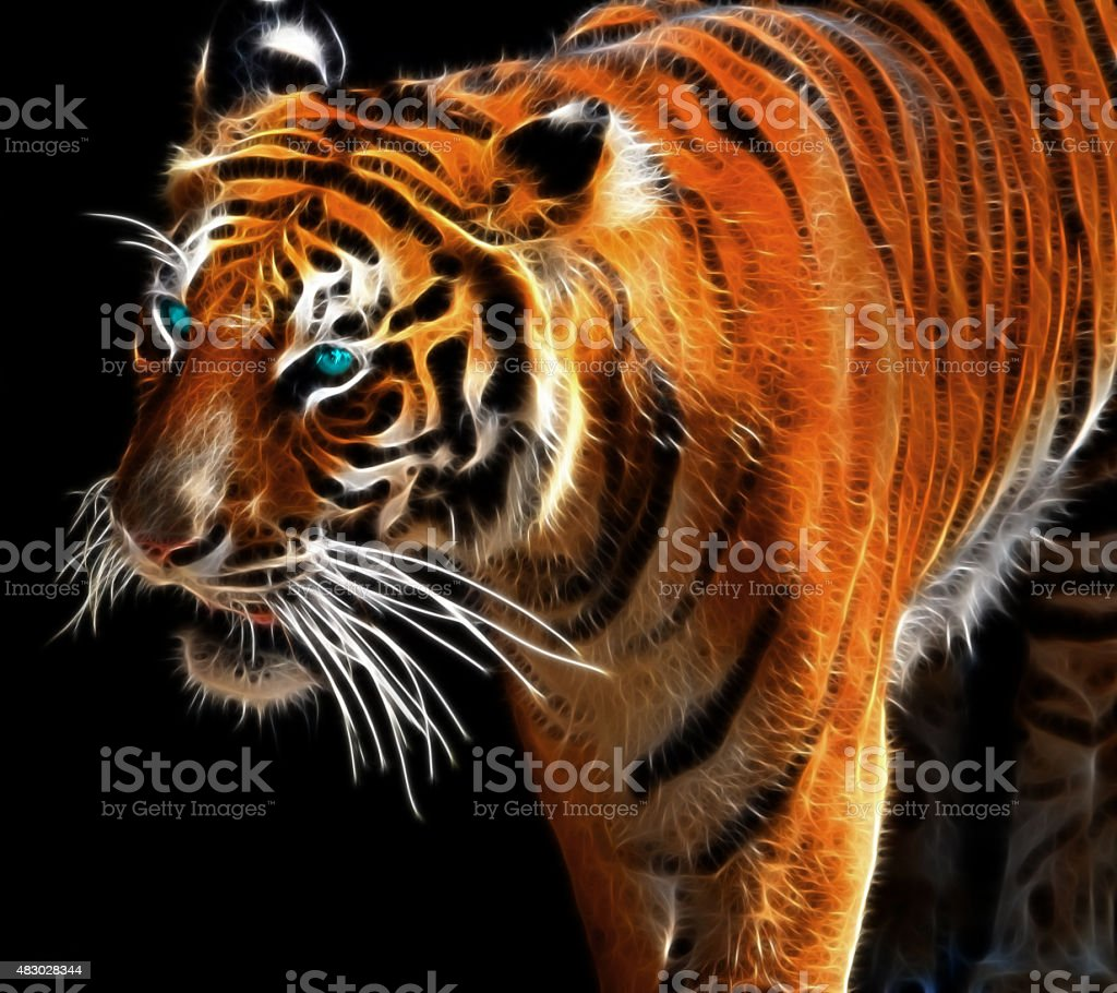Digital drawing of a tiger stock photo