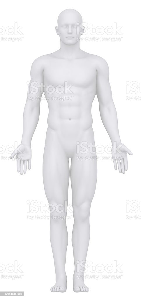 Digital front view of a male body royalty-free stock photo