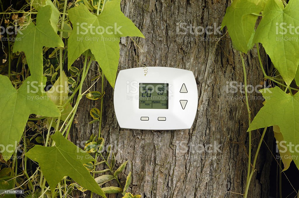 Digital home heating and cooling thermostat in a tree.