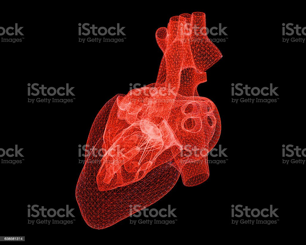 Digital Human Heart stock photo