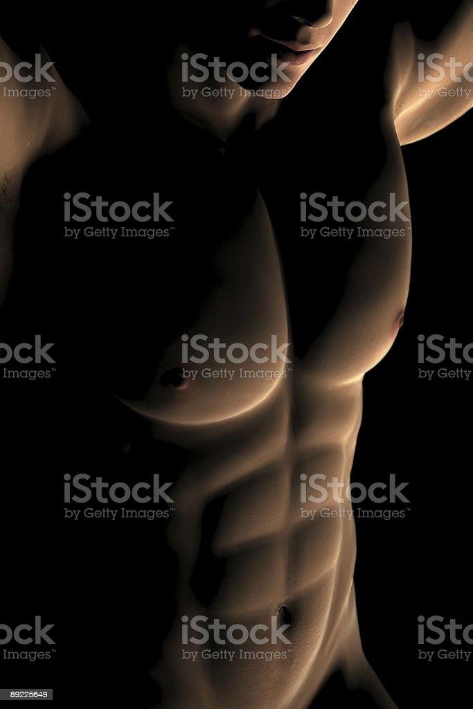 Digital Male Muscular Torso royalty-free stock photo
