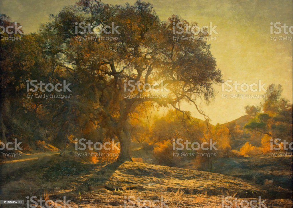 Digital oil painting of oak tree at sunset stock photo