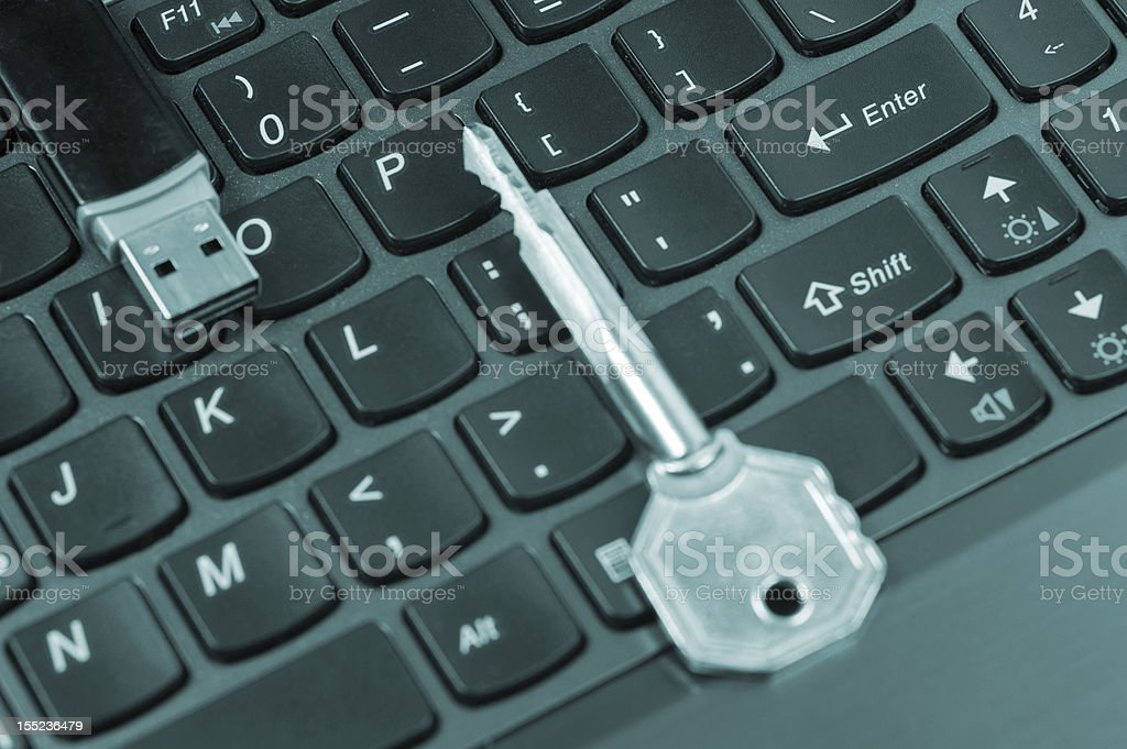 Digital Security royalty-free stock photo