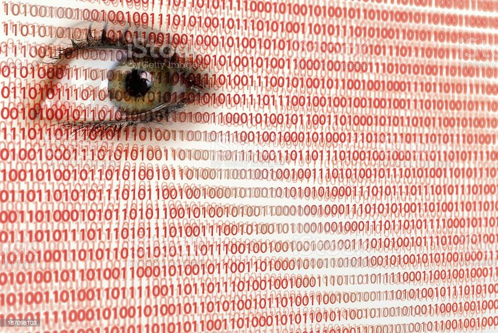 Digital Surveillance on computer screen royalty-free stock photo
