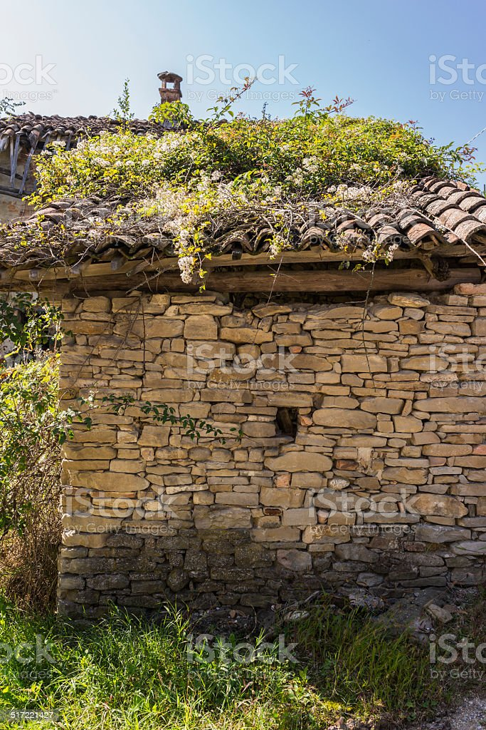 Dilapidated farmhouse whit overgrown roof (Langhe, Unesco World Heritage site) stock photo