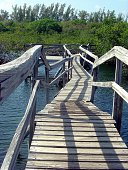 Dilapidated wood bridge walkway over creek