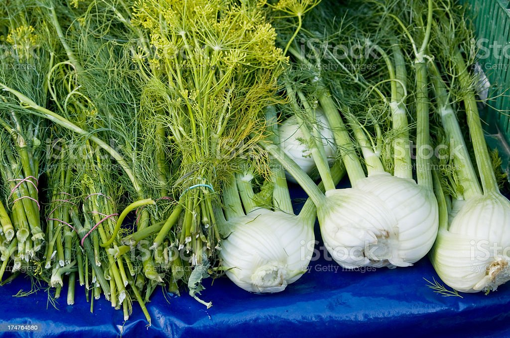 Dill and fennel at a market stock photo