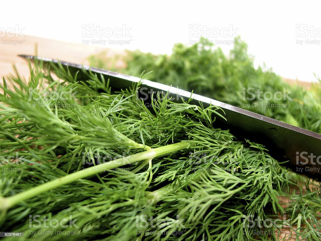 Dill herb cut royalty-free stock photo