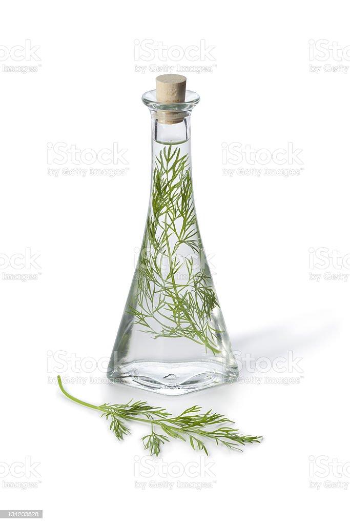 Dill vinegar royalty-free stock photo