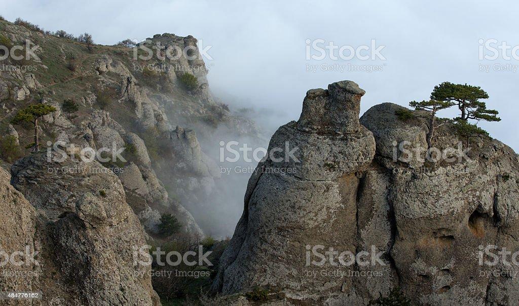 Dimerdzhi valley in Crimea Russia stock photo