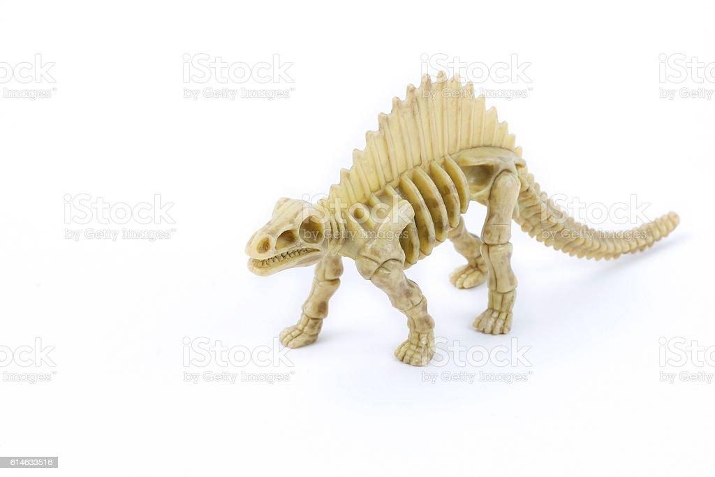 Dimetrodon dinosaur skeleton stock photo