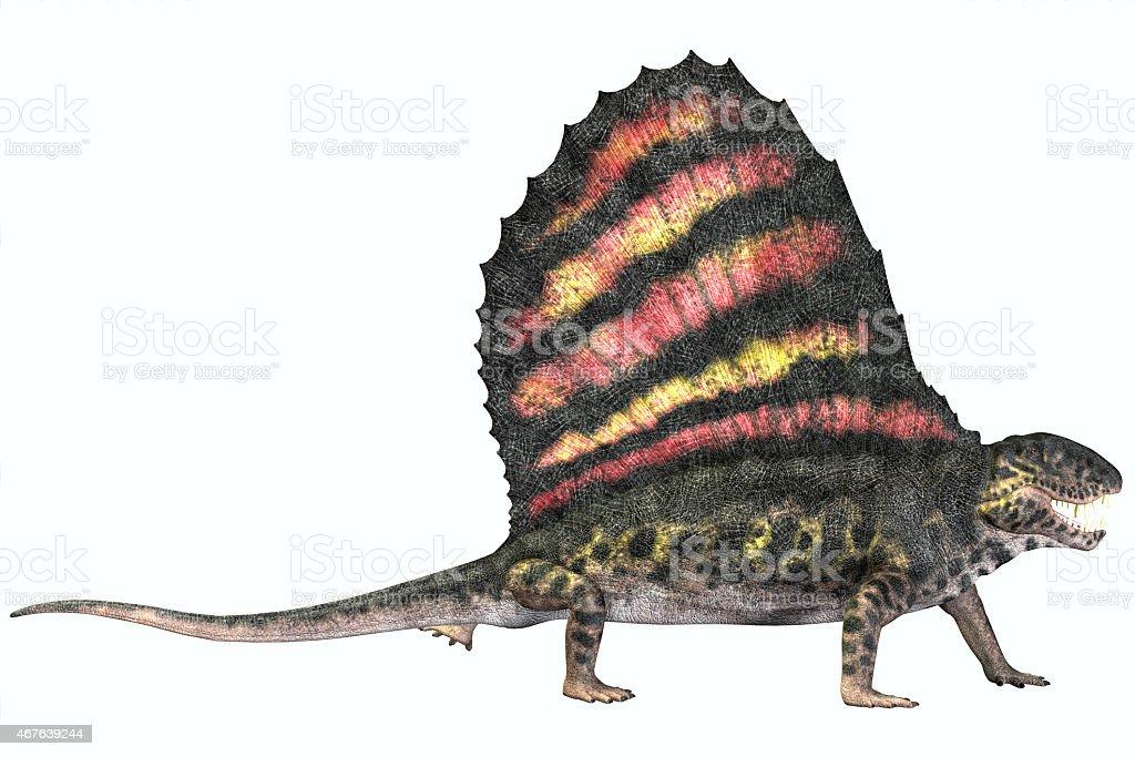 Dimetrodon Permian Reptile stock photo
