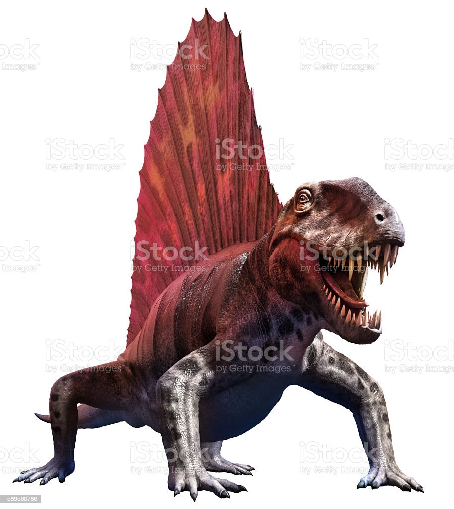 dimetrodon stock photo