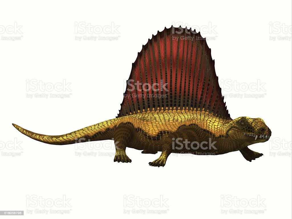 Dimetrodon Reptile Profile stock photo