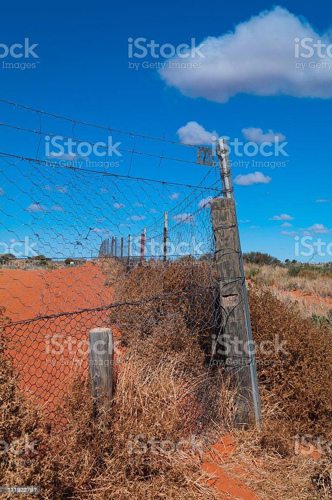 Dingo Fence stock photo