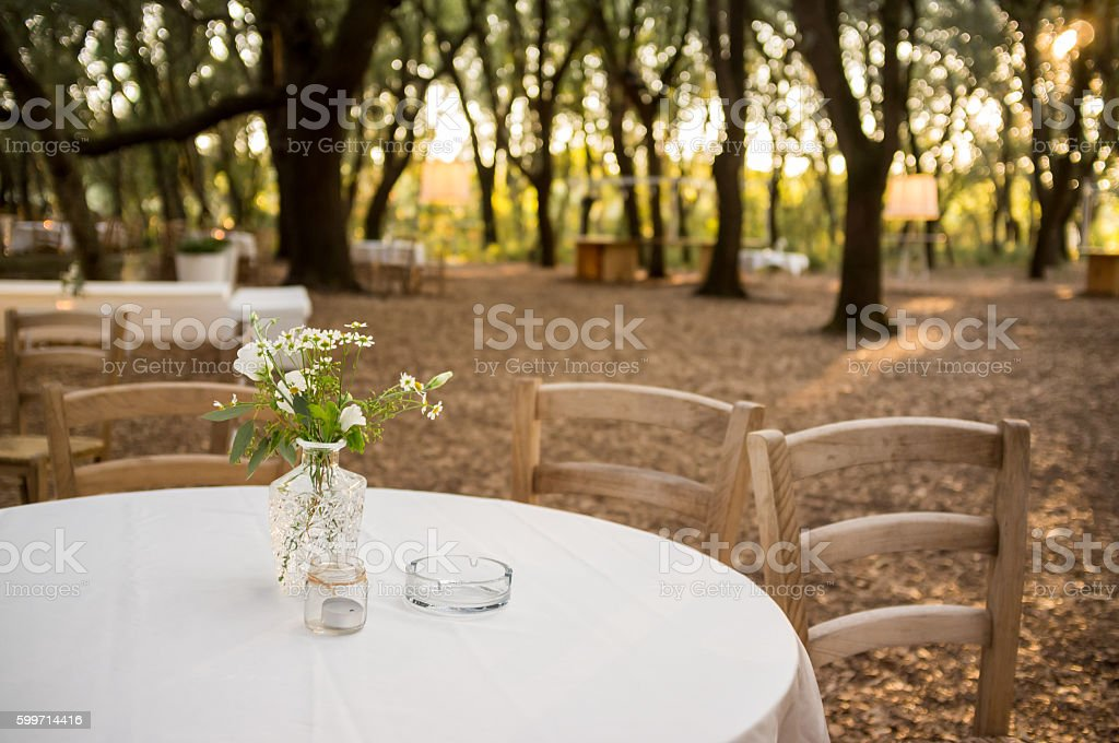 Dining tables in oak forest at sunset stock photo