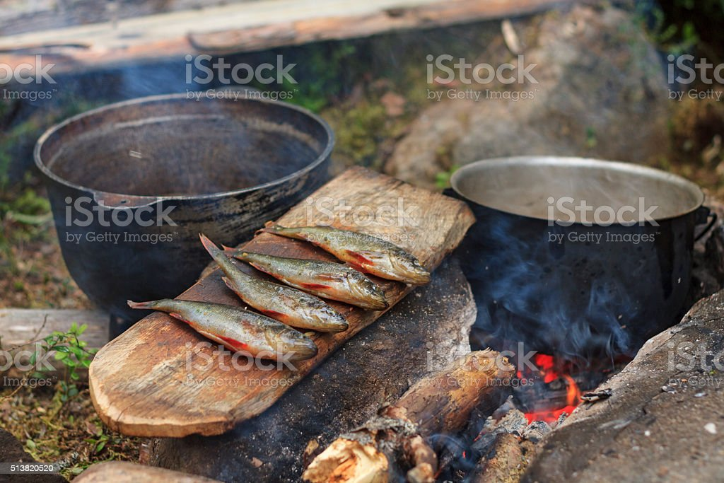 Dinner survivors in the woods stock photo