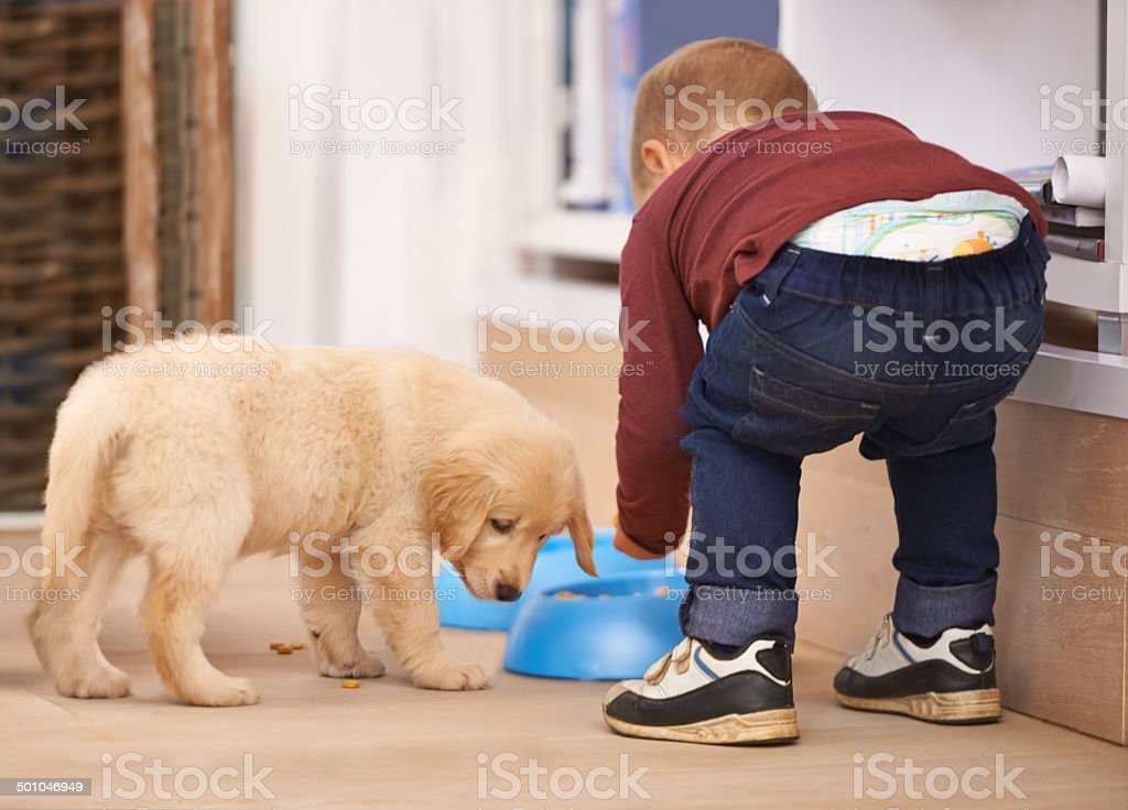 Dinner time - come and get it stock photo