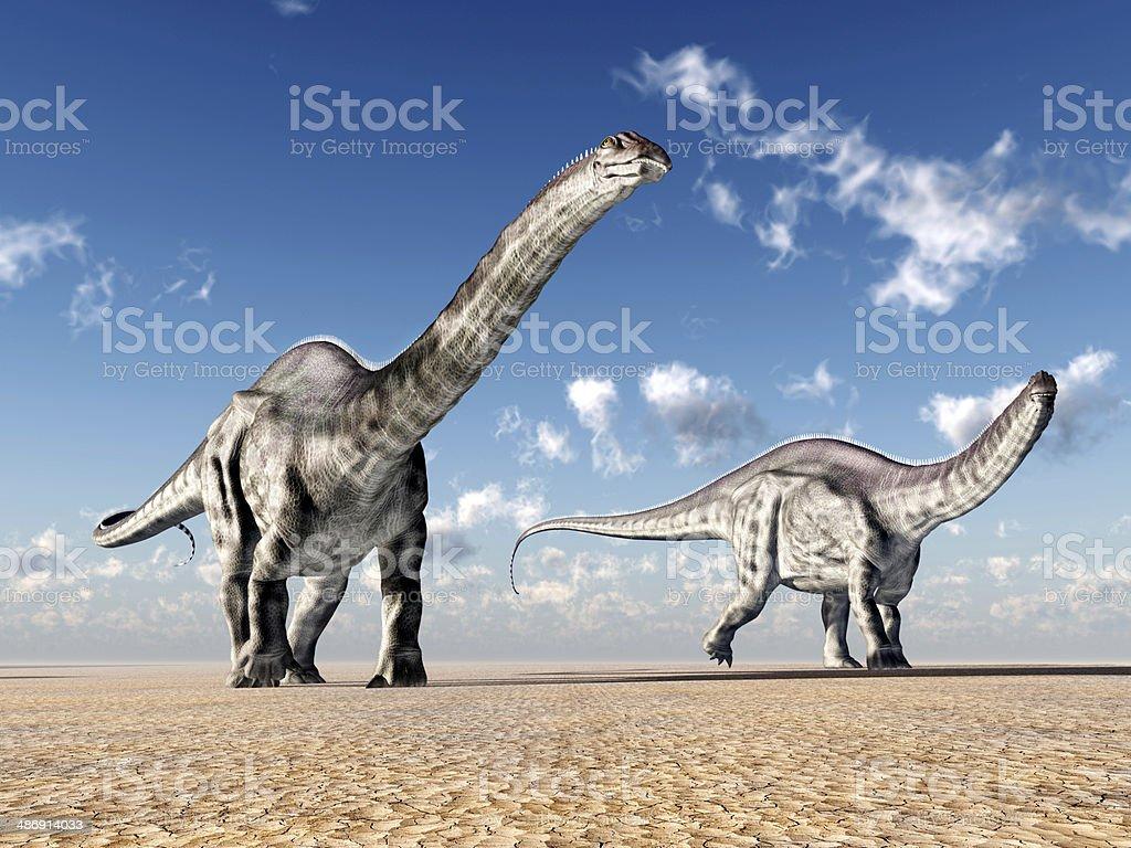 Dinosaur Apatosaurus stock photo