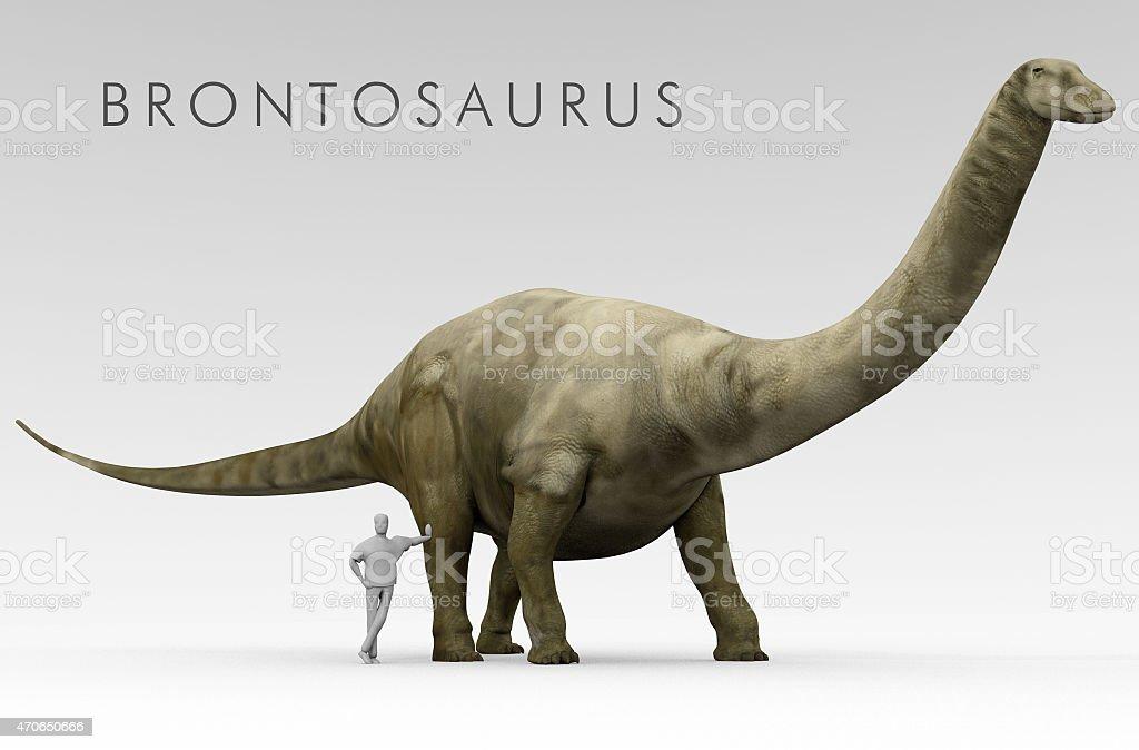 Dinosaur Brontosaurus And Human Size Comparison stock photo