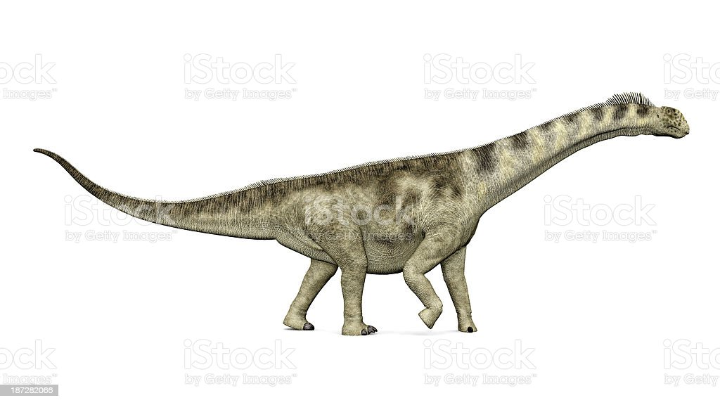 Dinosaur Camarasaurus royalty-free stock photo