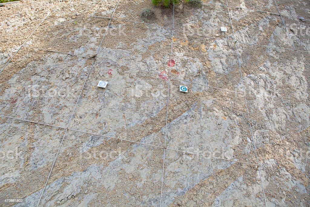 Dinosaur eggs outcrop stock photo