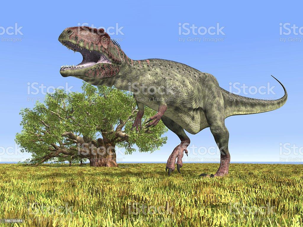Dinosaur Giganotosaurus stock photo