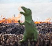 Dinosaur model in the burning field