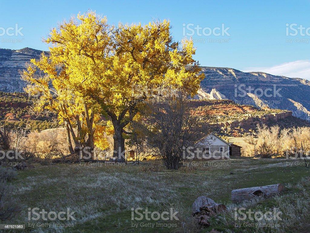 Dinosaur National Monument stock photo