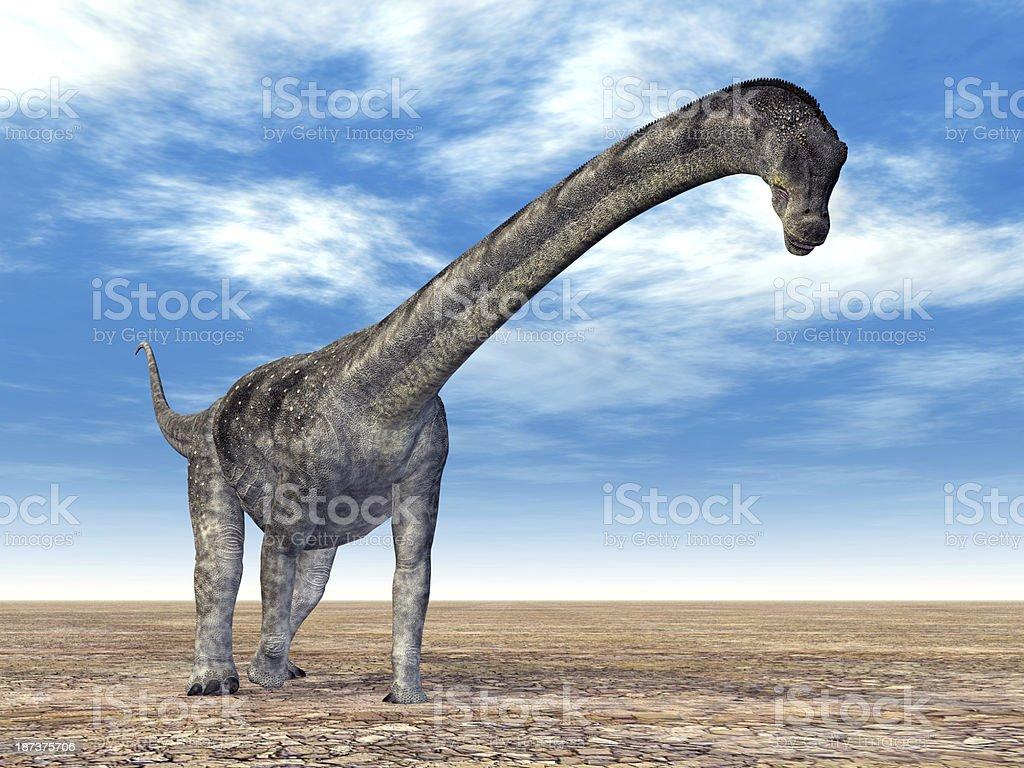 Dinosaur Puertasaurus stock photo