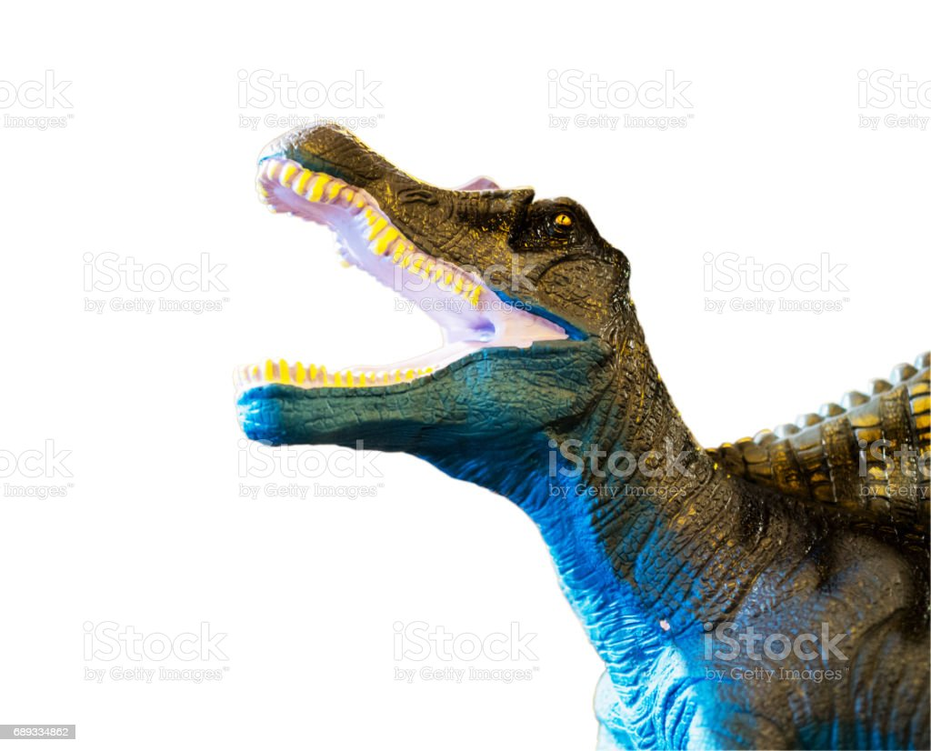 Dinosaur roaring, isolated on white background with clipping path stock photo