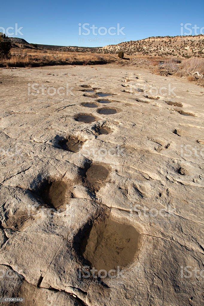 Dinosaur tracksite Colorado copy space stock photo