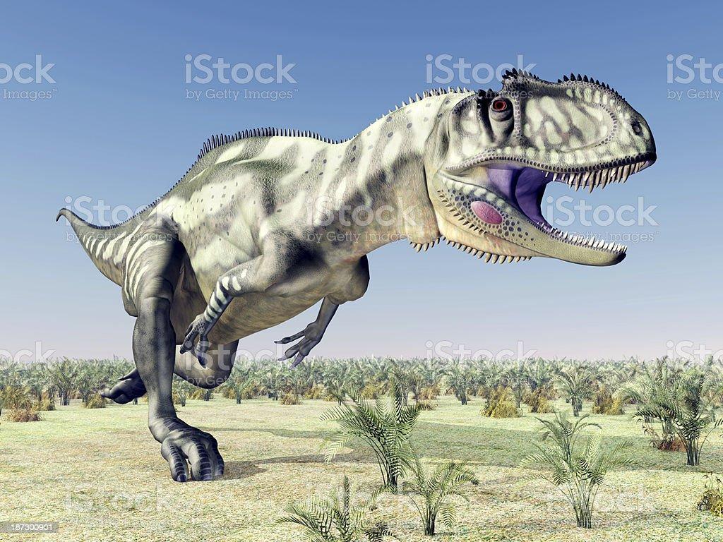 Dinosaur Yangchuanosaurus stock photo