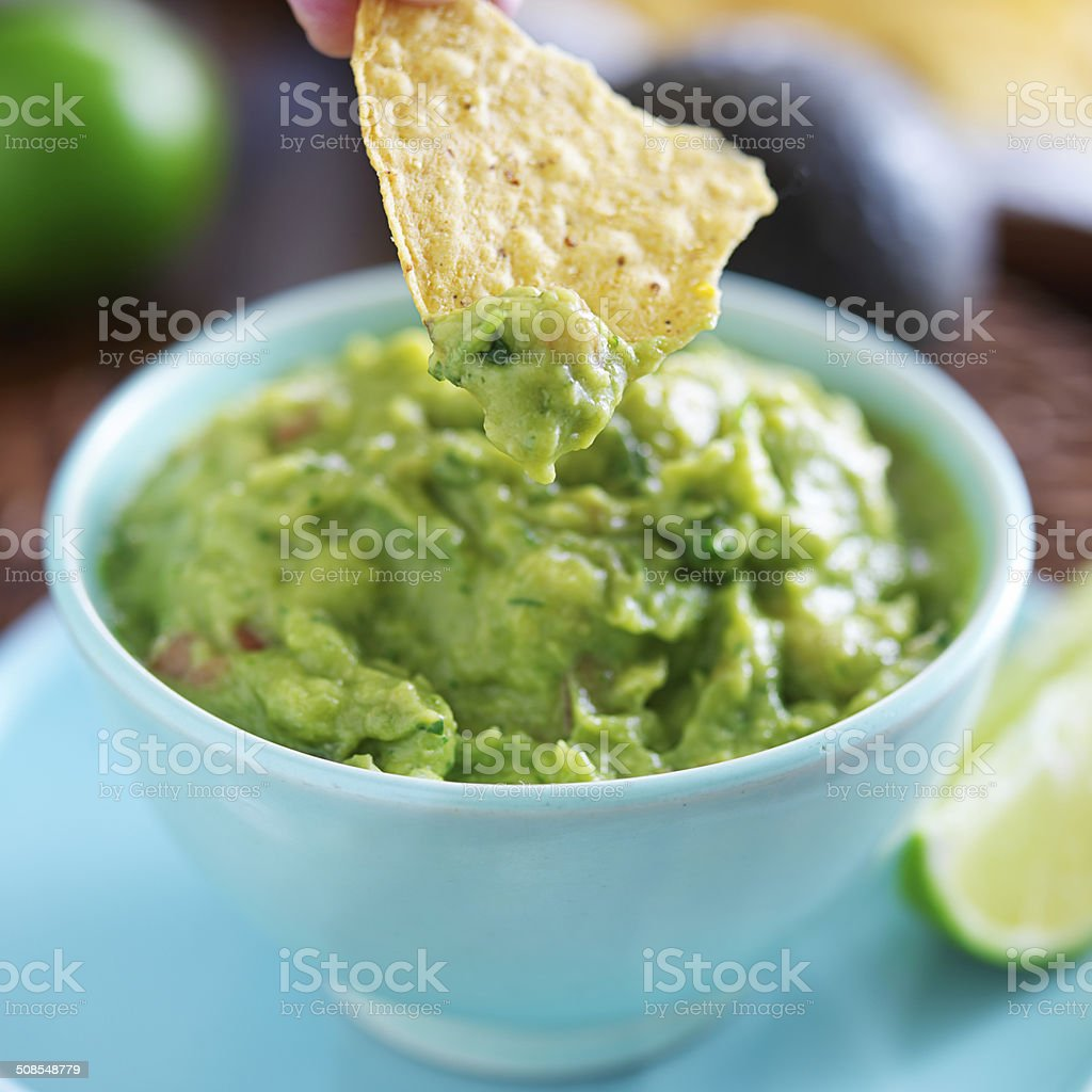dipping tortilla chip in mexican guacamole stock photo