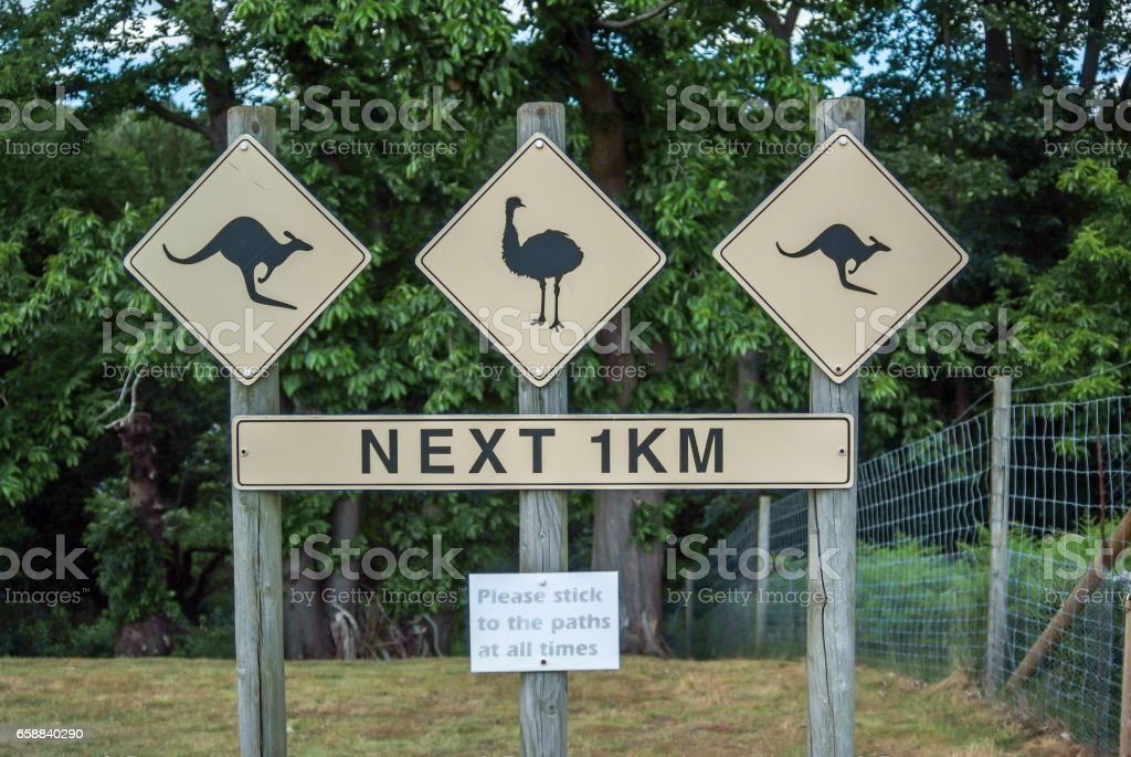 Directional sign pole at Zoo for Kangaroo and Ostrich stock photo