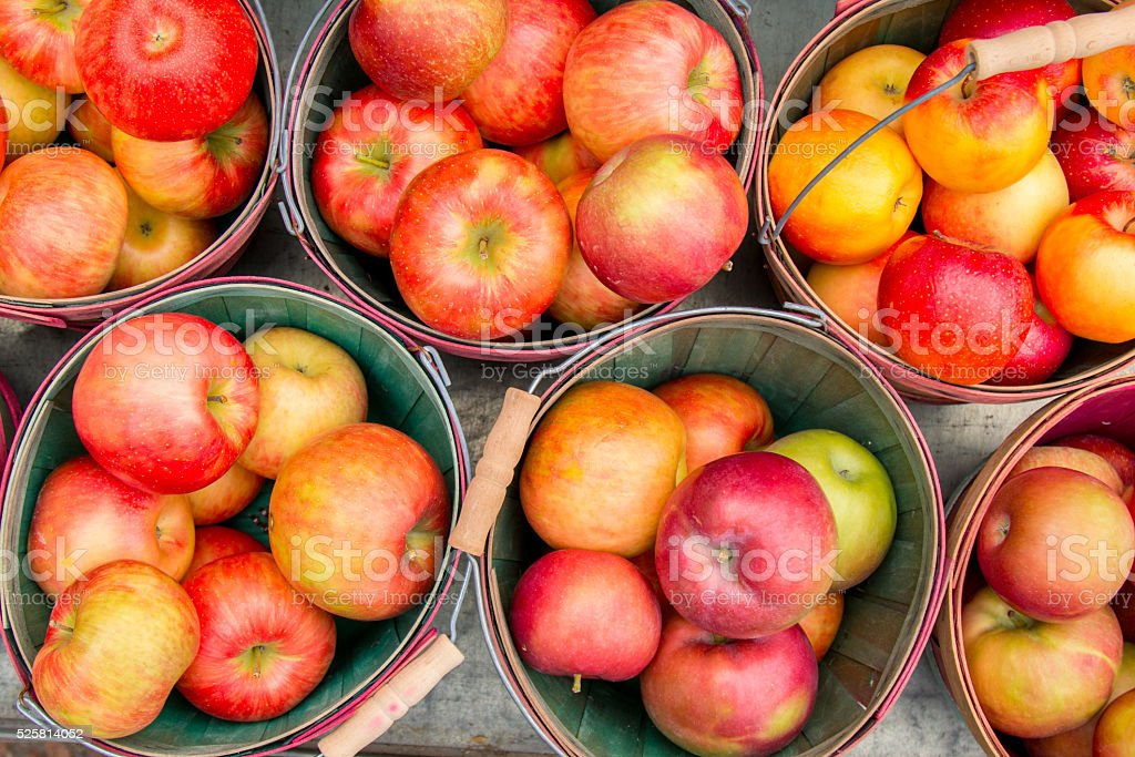 directly above of frame apples in basket stock photo