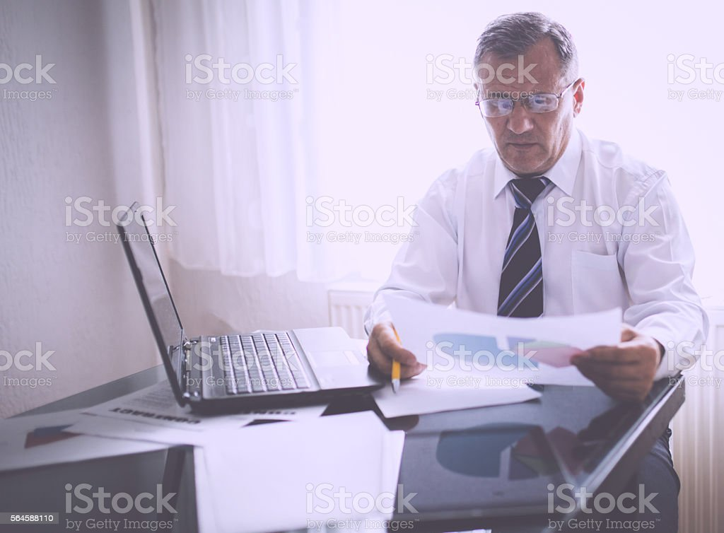 Director at his office stock photo