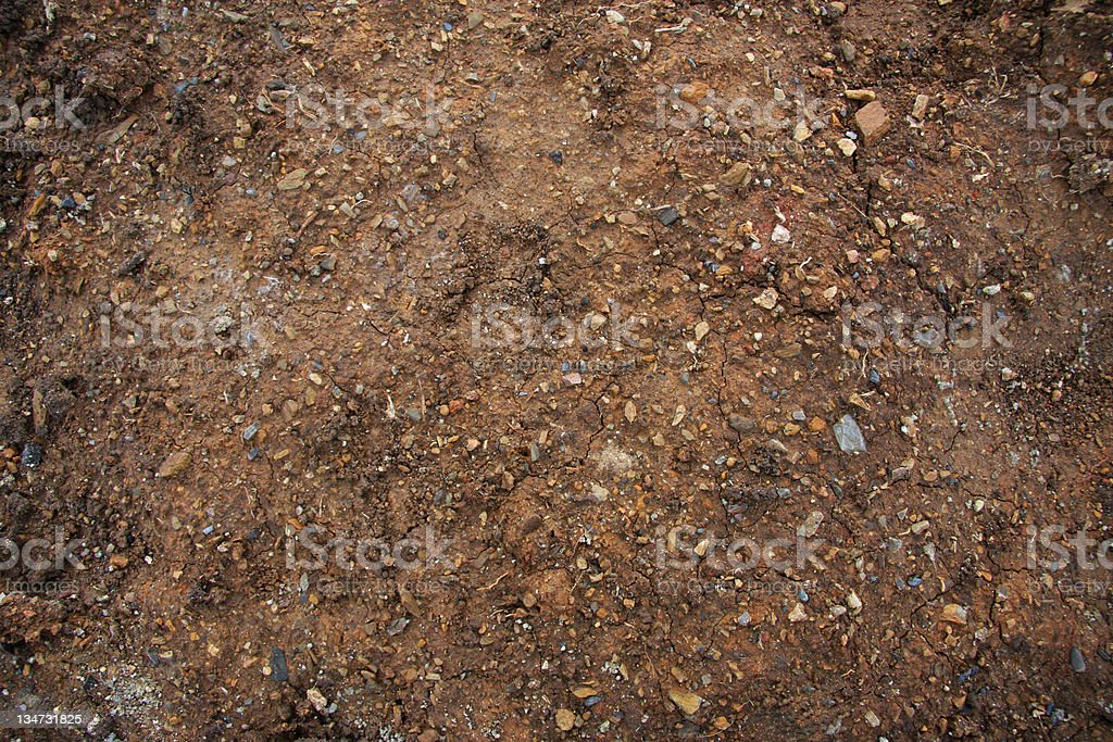 Dirt Background Series stock photo