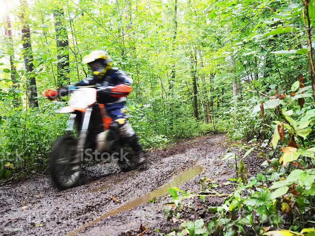 Dirt biking in the woods stock photo