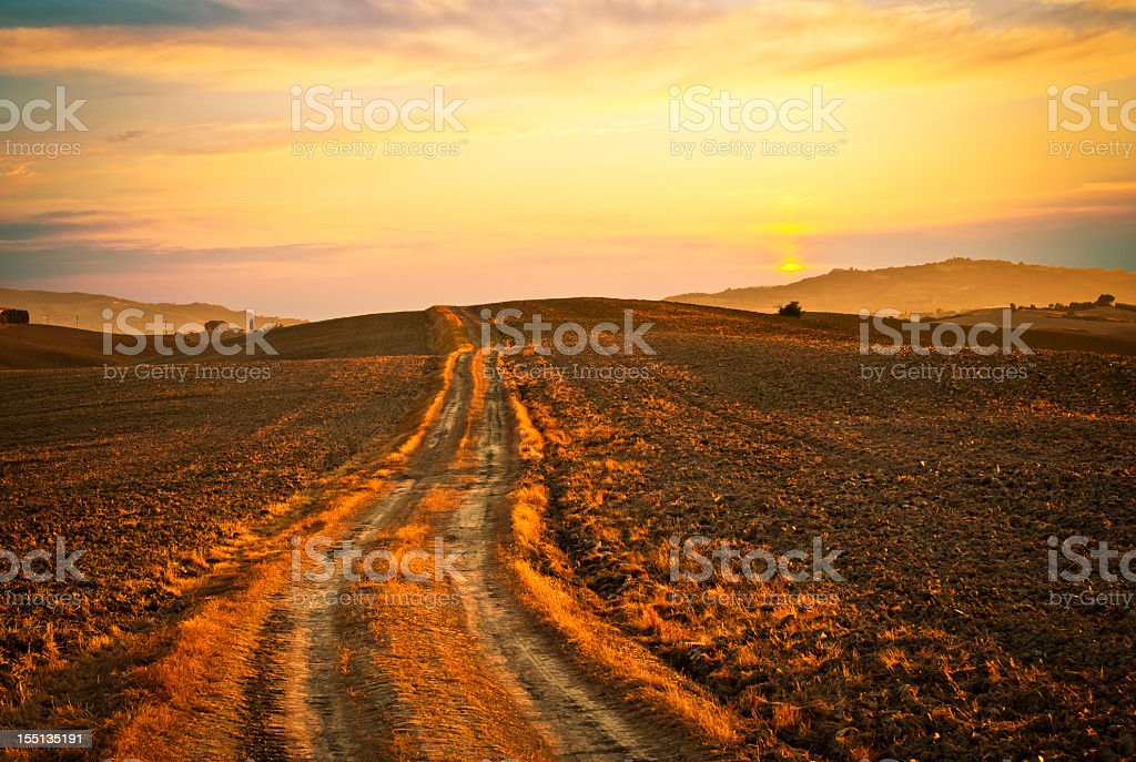 Dirt Country Road In A Plowed Field, Tuscany stock photo
