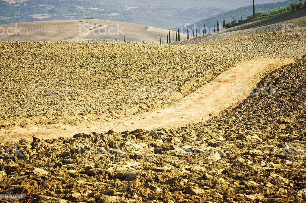 Dirt Country Road In A Plowed Field, Val D'Orcia, Tuscany stock photo