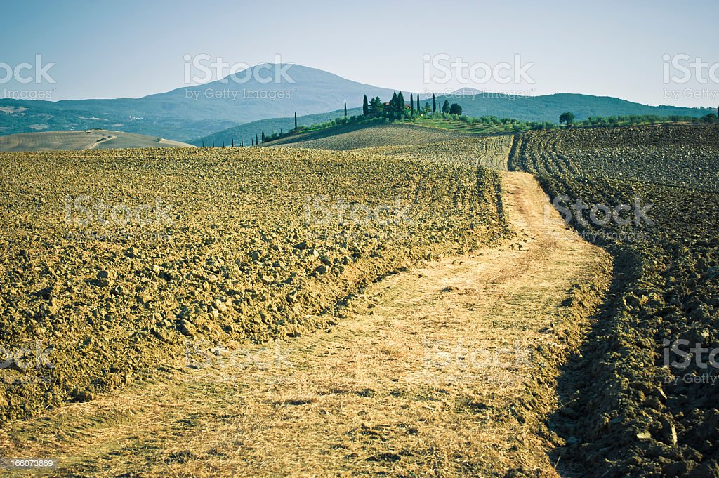 Dirt Country Road In Val D'Orcia, Tuscany stock photo