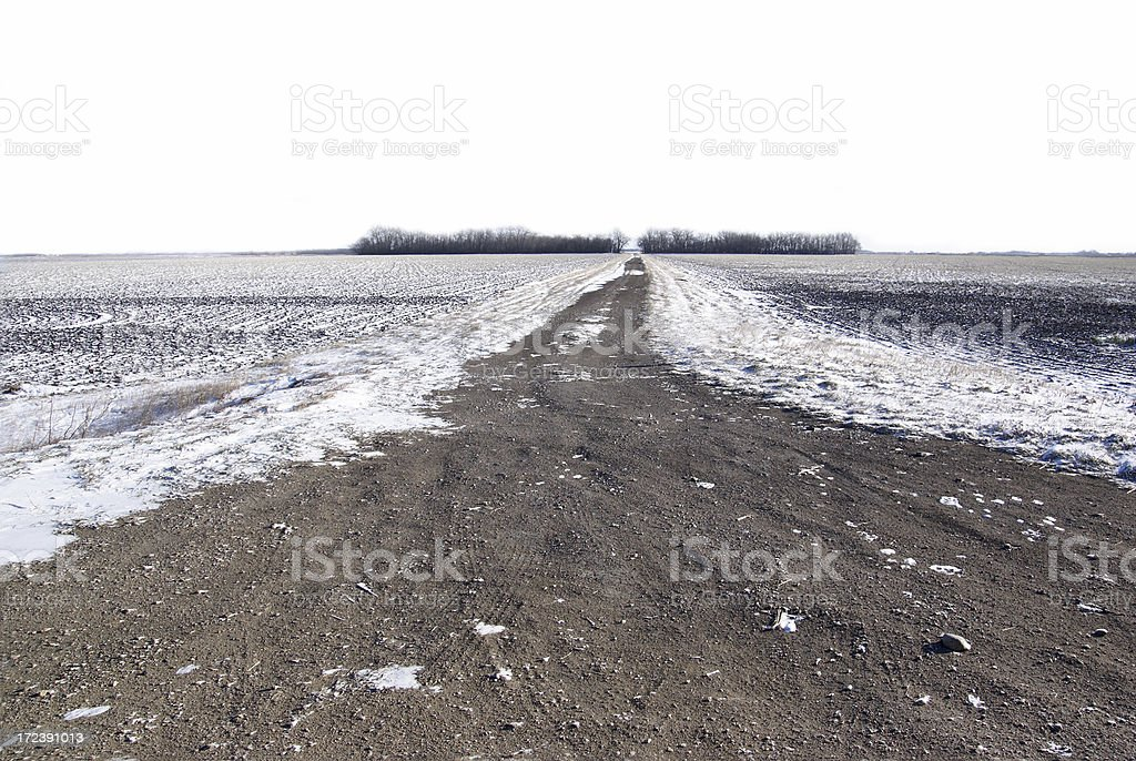 Dirt Prairie Road across Snow Covered Field royalty-free stock photo