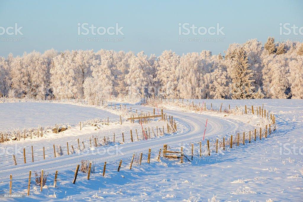 Dirt road across the field in wintry landscape stock photo