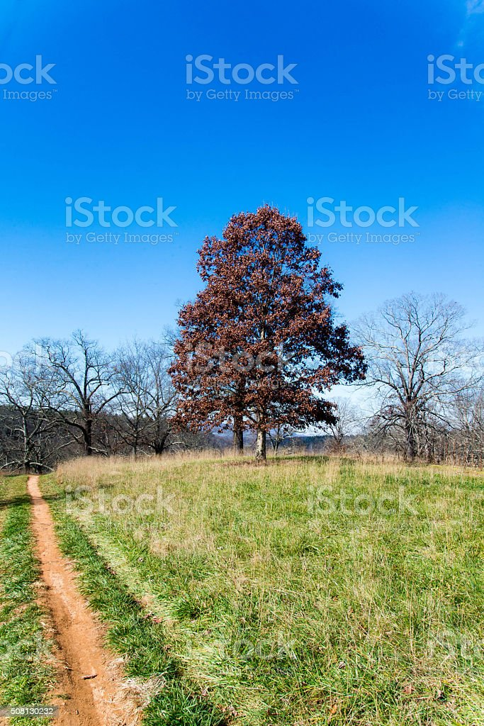 Dirt road and landscape stock photo