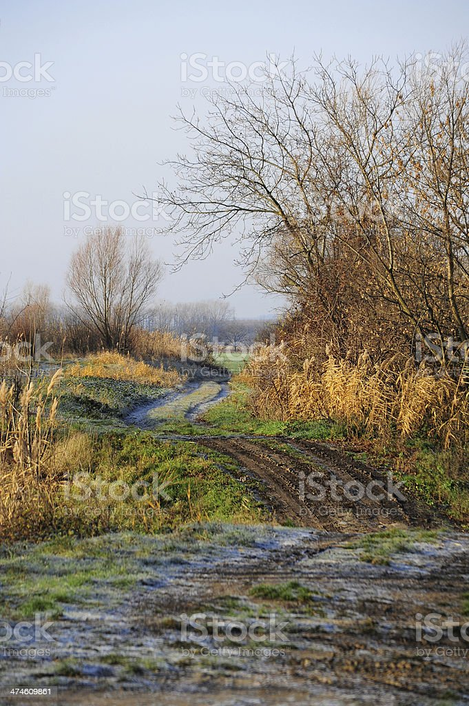 Dirt road and trail along the Wulka in Burgenland stock photo