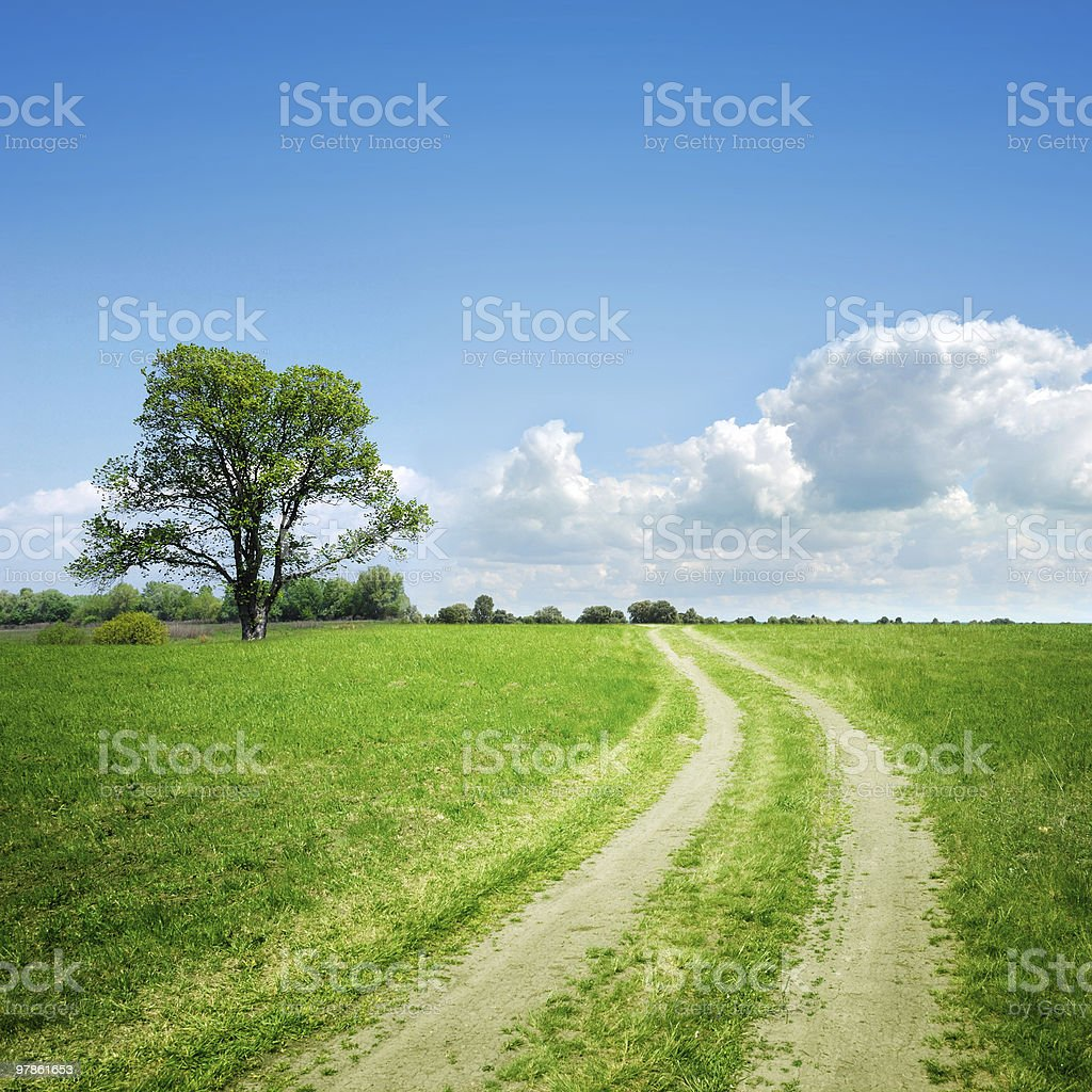 dirt road and tree on horizon royalty-free stock photo