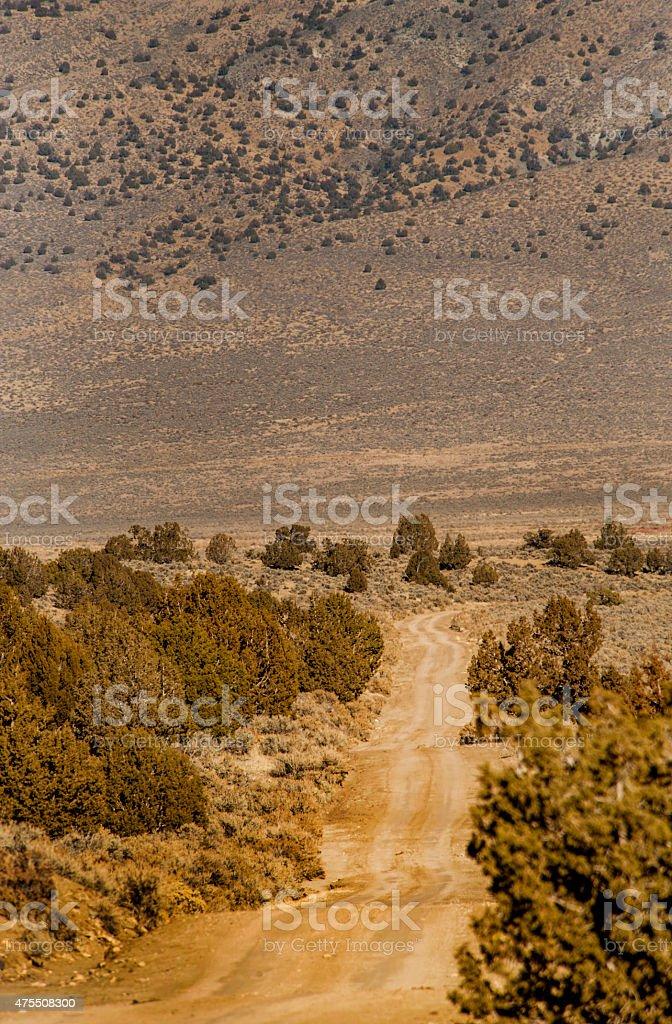 Dirt Road, BLM Lands, Nevada stock photo